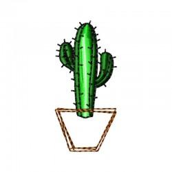 Kaktus im Topf 1